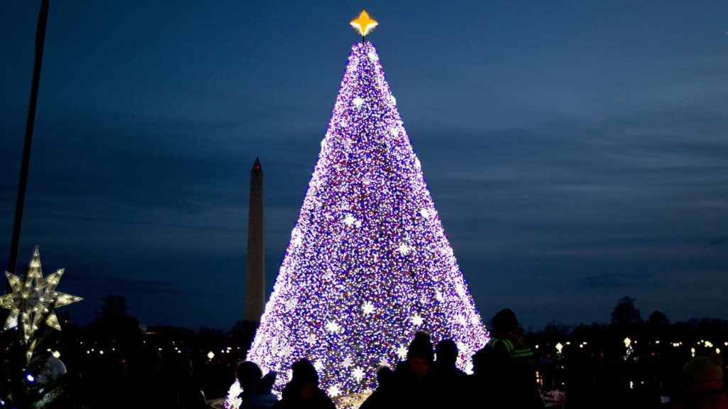 Visitors look at the National Christmas Tree with the Washington Monument in the background on the Ellipse near the White House, in Washington, Saturday, Dec. 3, 2016. ( AP Photo/Jose Luis Magana)