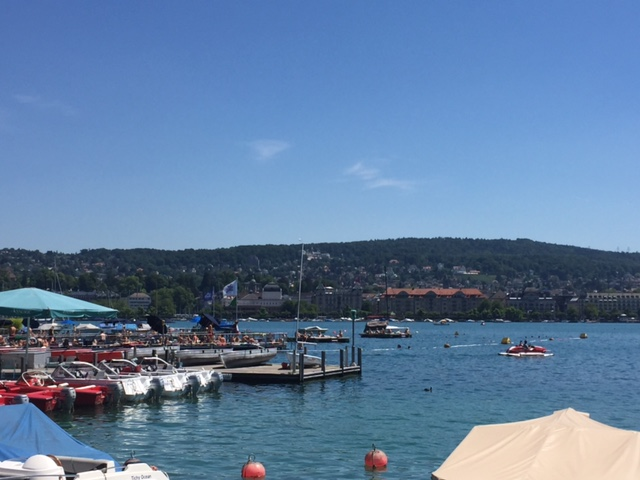 View from the Cafe in Lake Zurich