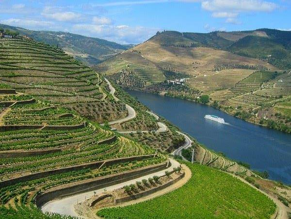Cruises in the Douro Valley (source: sunwebtravel.com)
