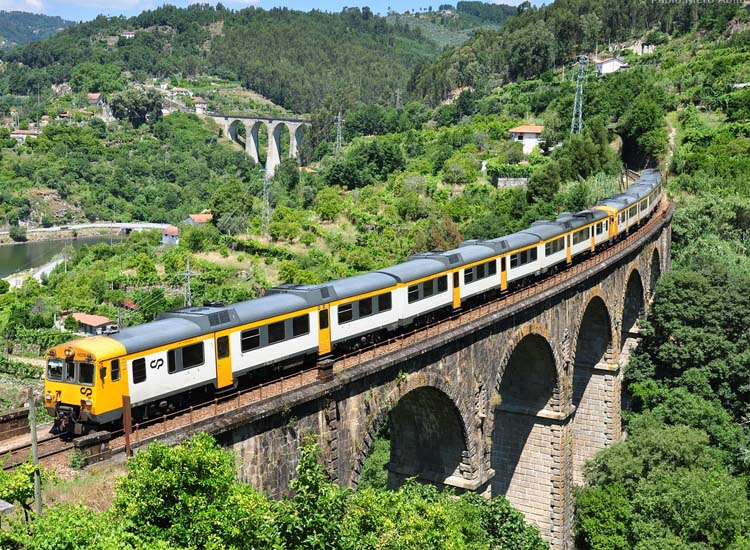 Train Scenic Ride at Douro Valley