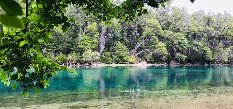 Los Alerces National Park. Arrayanes River