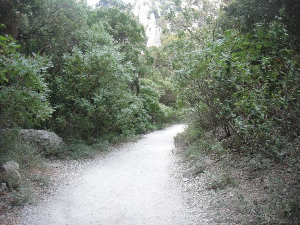 An easy part of the footpath