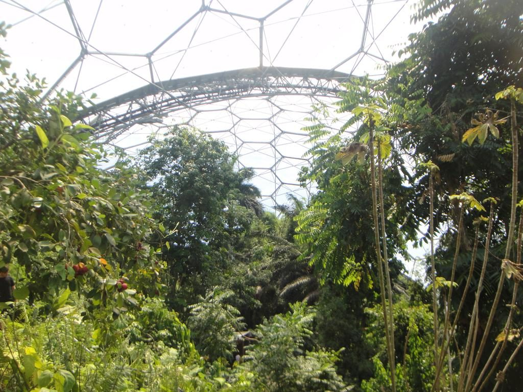 Eden Project's Rainforest Biome