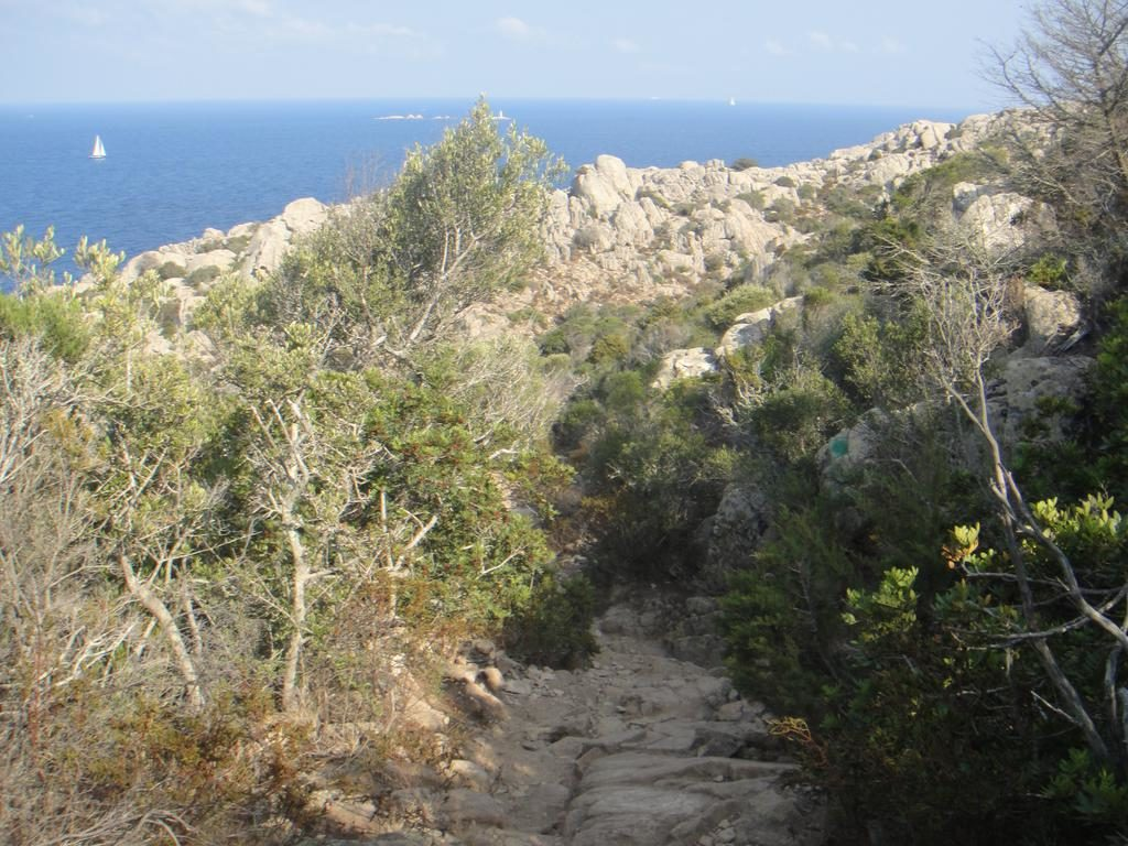 Cala Coticcio hiking trail